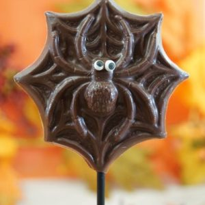 Sweet Spot Chocolate Shop Milk Chocolate Spider Stick